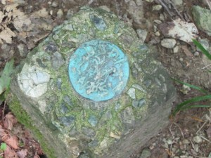 a teal blue marker set in a block of cement