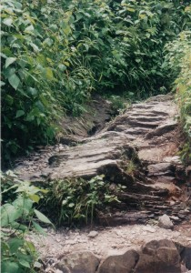 the trail is a series of rocks