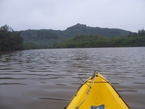 View of the river from a kayak. You can see the yellow bow in the picture
