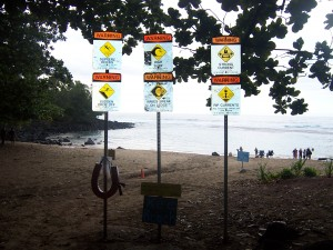 A collection of signs on a beach warning of the dangers of swimming there