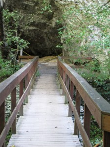 wood bridge leading to a roped off cave
