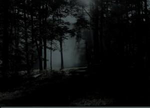 SCAN0130 gloomy