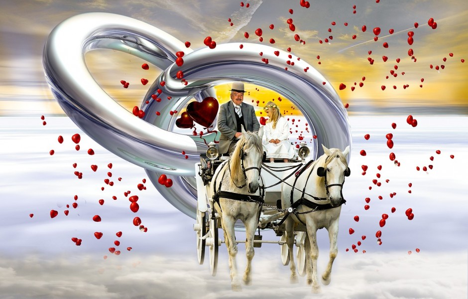 wedding carriage, rings