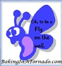 fly-on-the-wall-baking-in-a-tornado