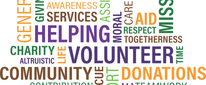 The Value of Volunteering? An Opportunity for Growth