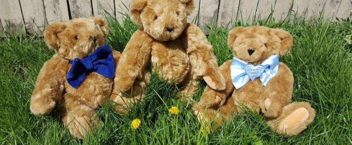 The Teddy Bears Picnic to the Rescue